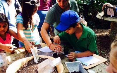 Tropical Rainforest Class for Homeschoolers at Fairchild