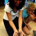 exotic animals in palmetto bay nature class
