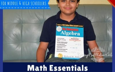 Homeschool Math: Math Essentials No-Nonsense Algebra Review